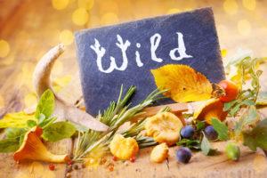 wildsaison-rund-ums-wild